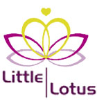 Little Lotus Miami